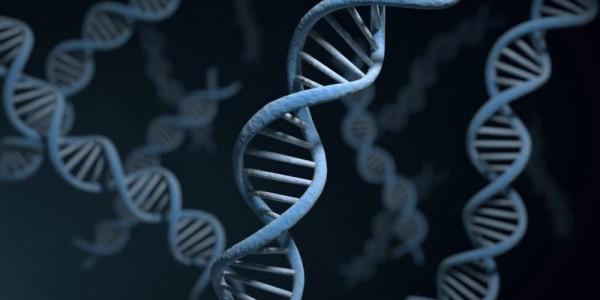 Genetik İnceleme - NGS