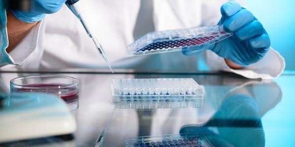 Preimlantasyon Genetik Tanı